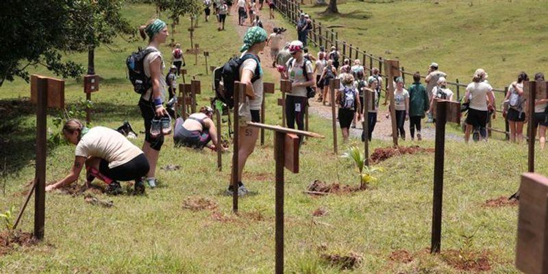 Jour 2 Raid l'arbre vert : Treck