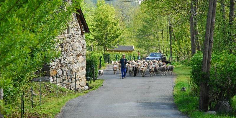 Le camping via natura en Pyrénées