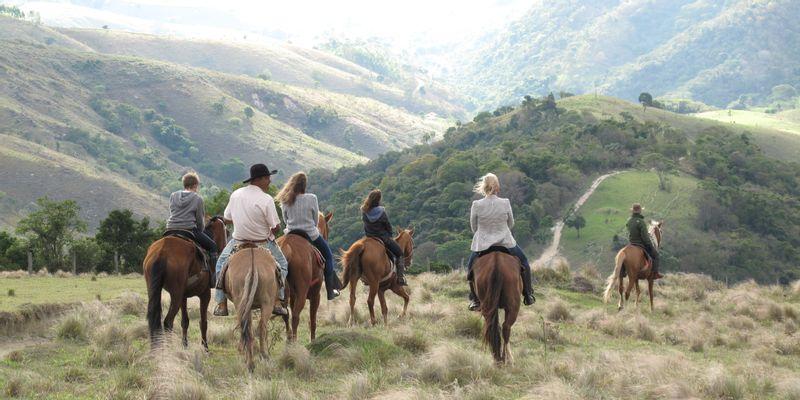 montagne vallée cheval brésil