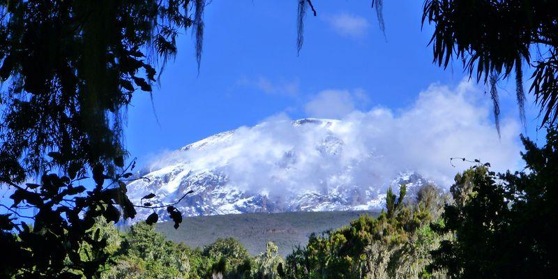 Walk of Life Kilimandjaro