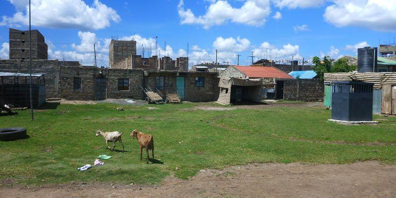Walk of Life kenya