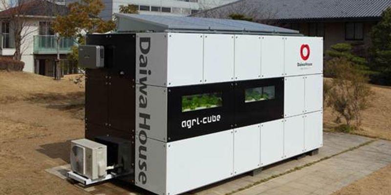 Agri-Cube, le caisson potager urbain