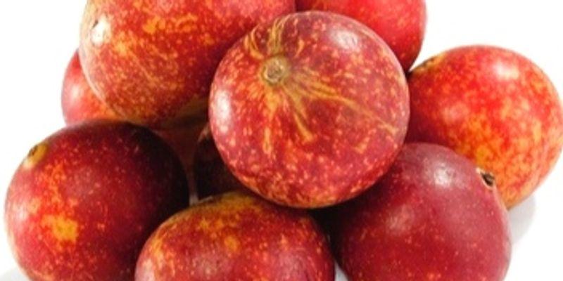 camu camu fruit
