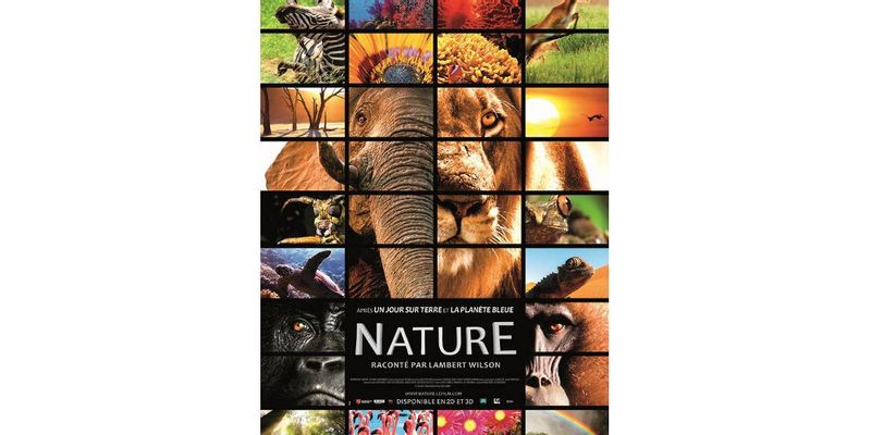 Nature affiche film