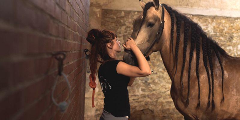 Passer du temps avec son cheval