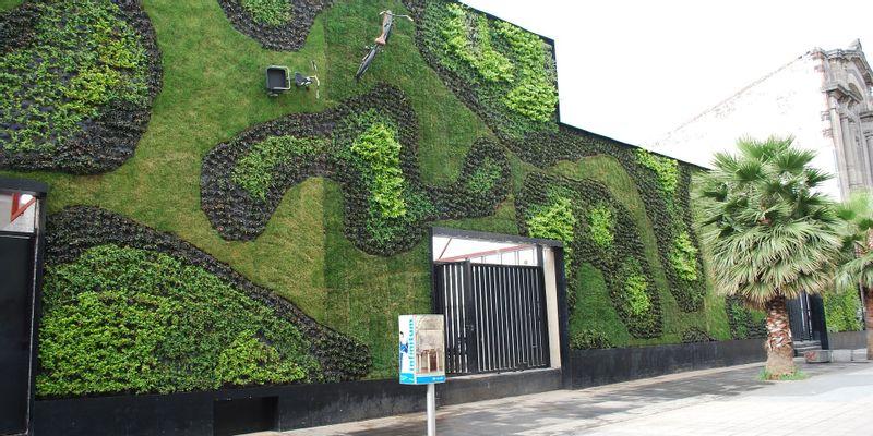 Université Claustro mur vert Mexico