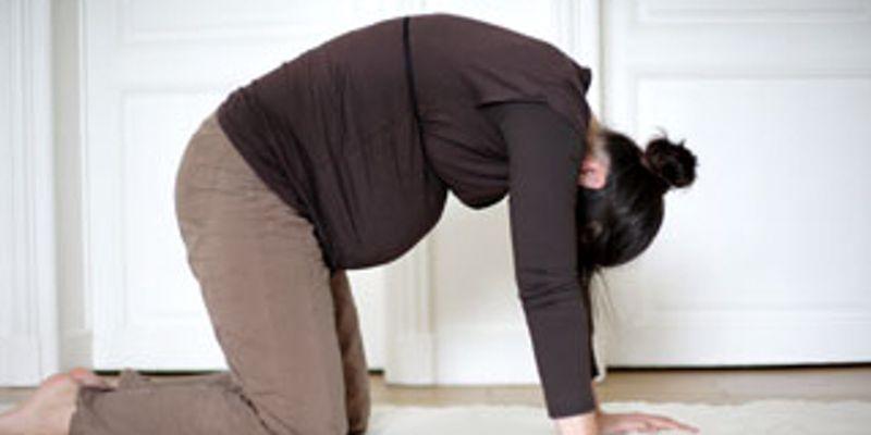 La position du chat pour une meilleure respiration pendant la grossesse