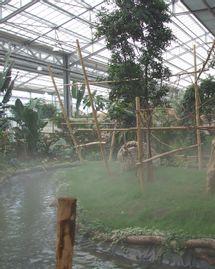 Biotropica zoo
