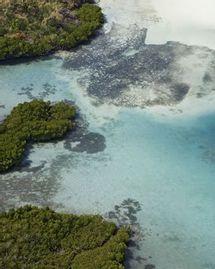 Départ pour l'île Maurice