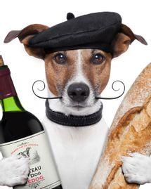 chien baguette vin france