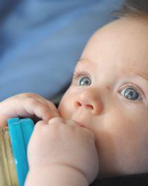 bébé biberon bpa bisphenol a