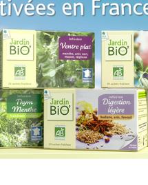 Jardin Bio infusion ventre plat