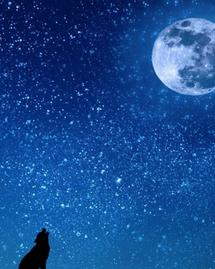 3 rituels à pratiquer pour célébrer la lune