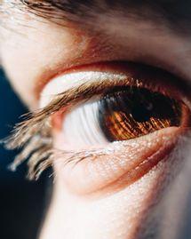 oeil iridologie