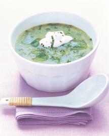 soupe glacée concombre