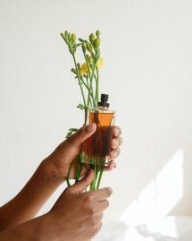 5 parfums bio qui sentent l'été