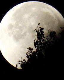 Pleine Lune et éclipse lunaire du 5 Juillet : rituel yogique pour libérer votre coeur de tous ses maux