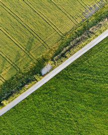 Écologie :comment réagir sans tout sacrifier ?