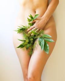 Soulager les maux du syndrome prémenstruel avec les plantes