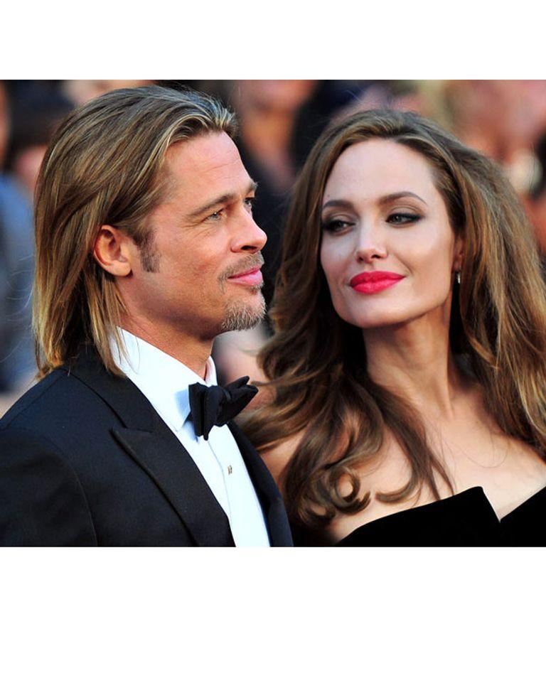 Le couple Jolie-Pitt se lance dans le vin bio
