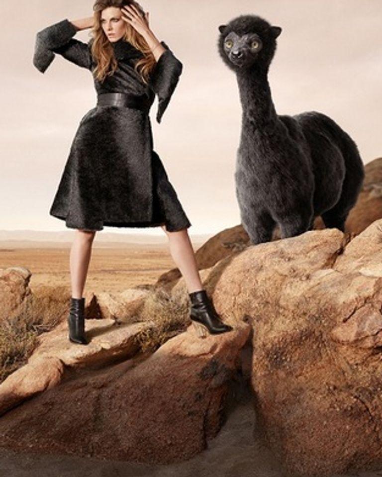La ligne Wonder World Fur