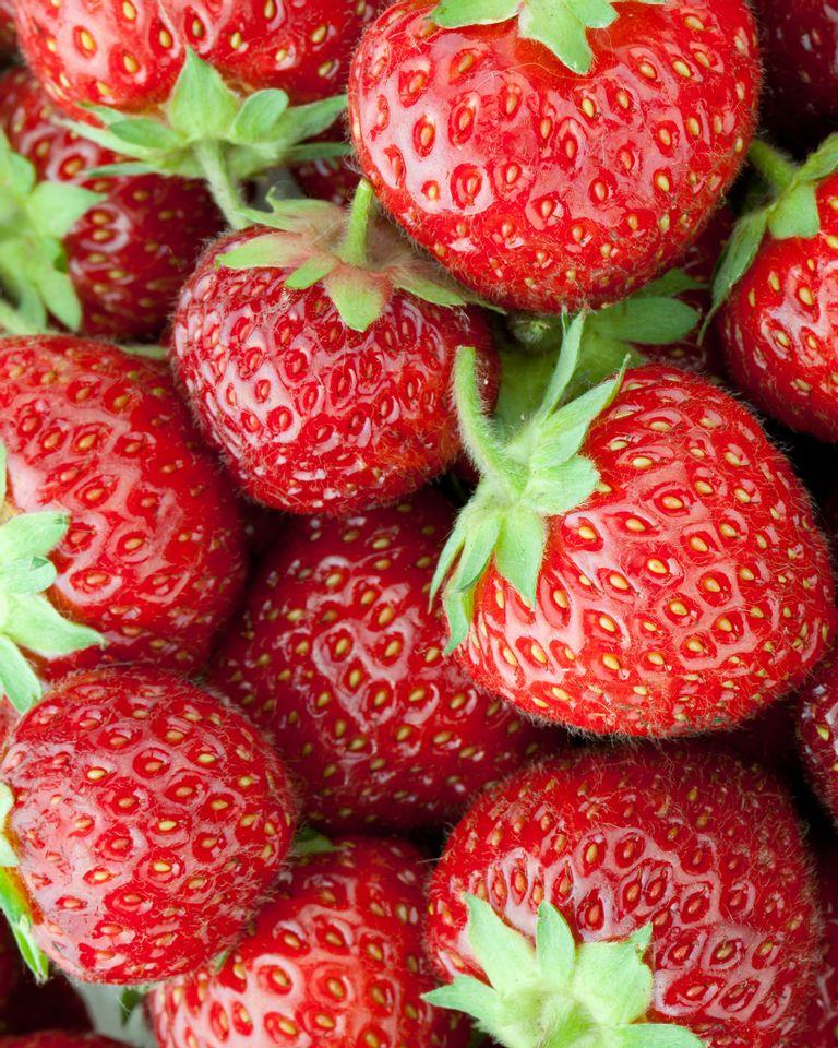 fraises rouges