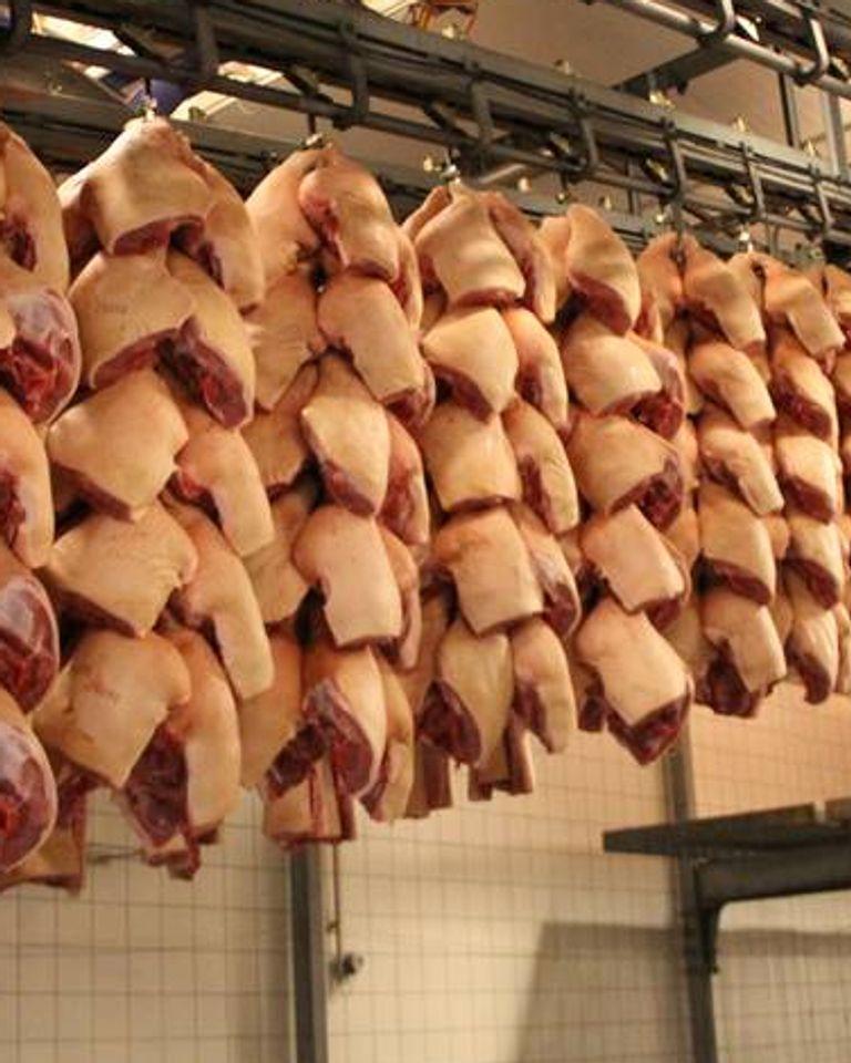 abattoir viande