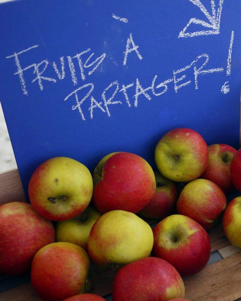 Les Fruits du voisin : croquez la pomme !