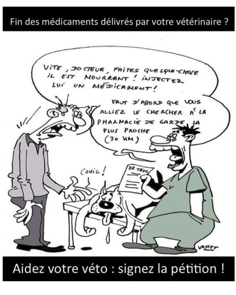 vétérinaire greve
