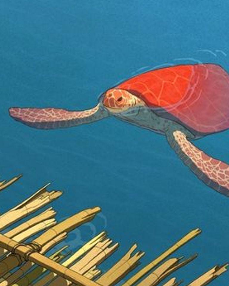 La tortue rouge arte