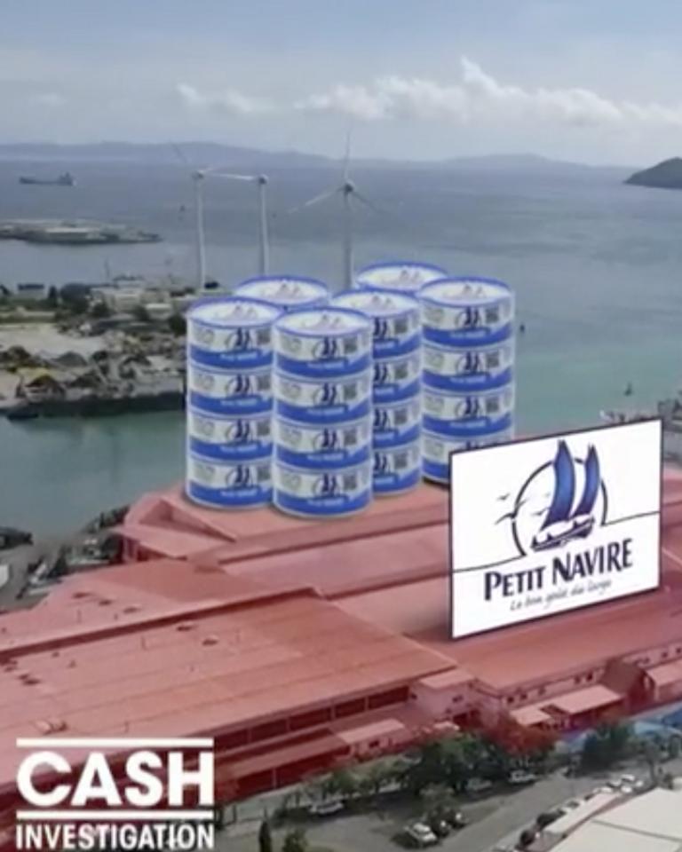 Cash investigation dénonce le business du thon : résumé et chiffres-clé