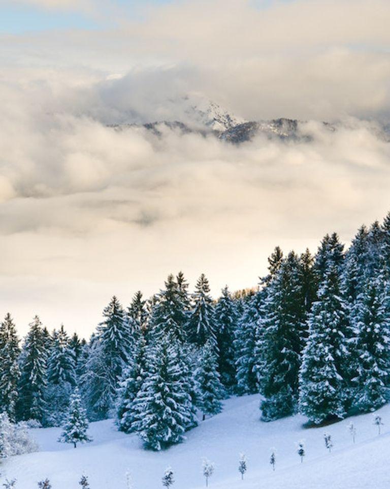 vacances ski ecolo