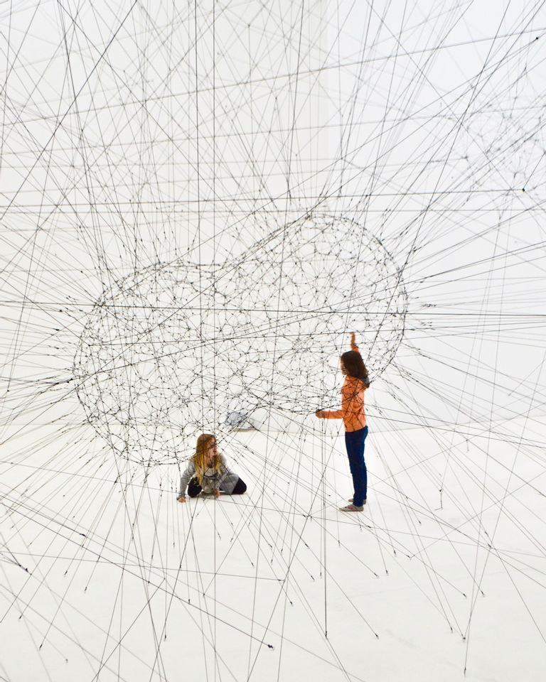 Connexions neurones plasticité cerveau