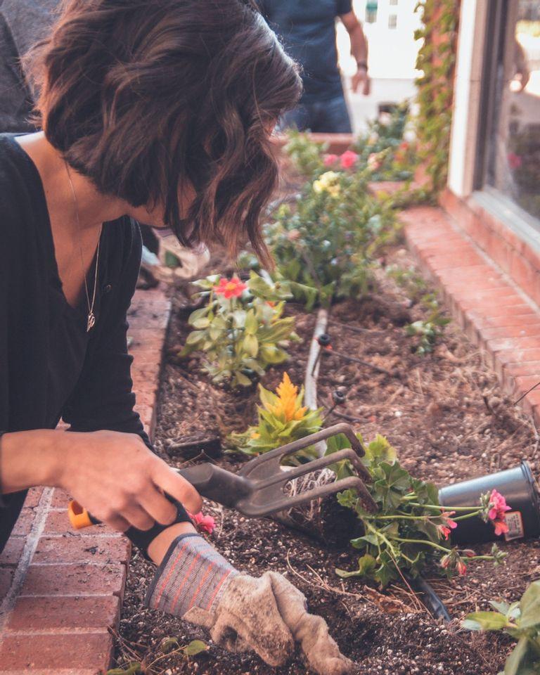 jardiner en ville potager