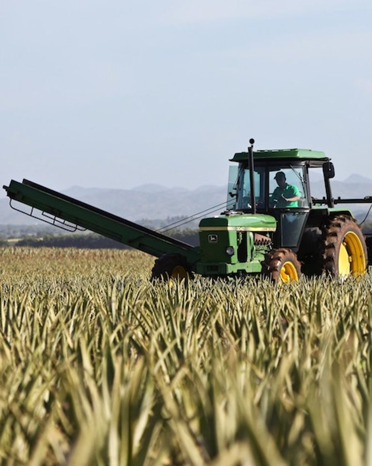 envoyé spécial pesticides