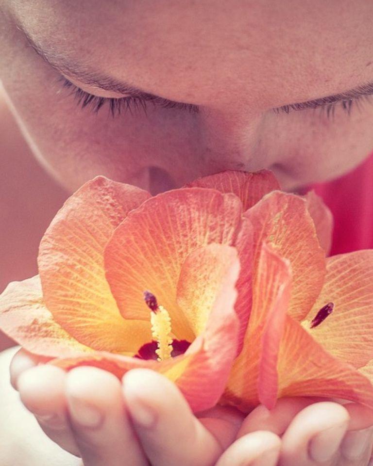 Sentir une fleur