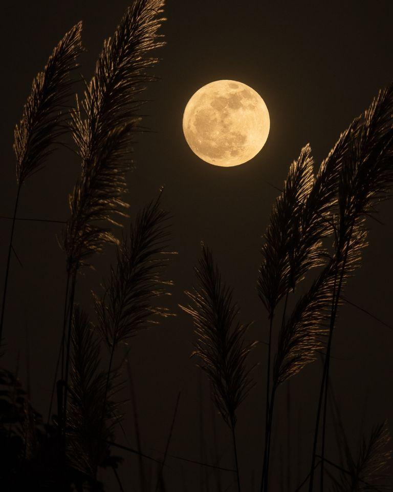 nouvelle lune 23 avril