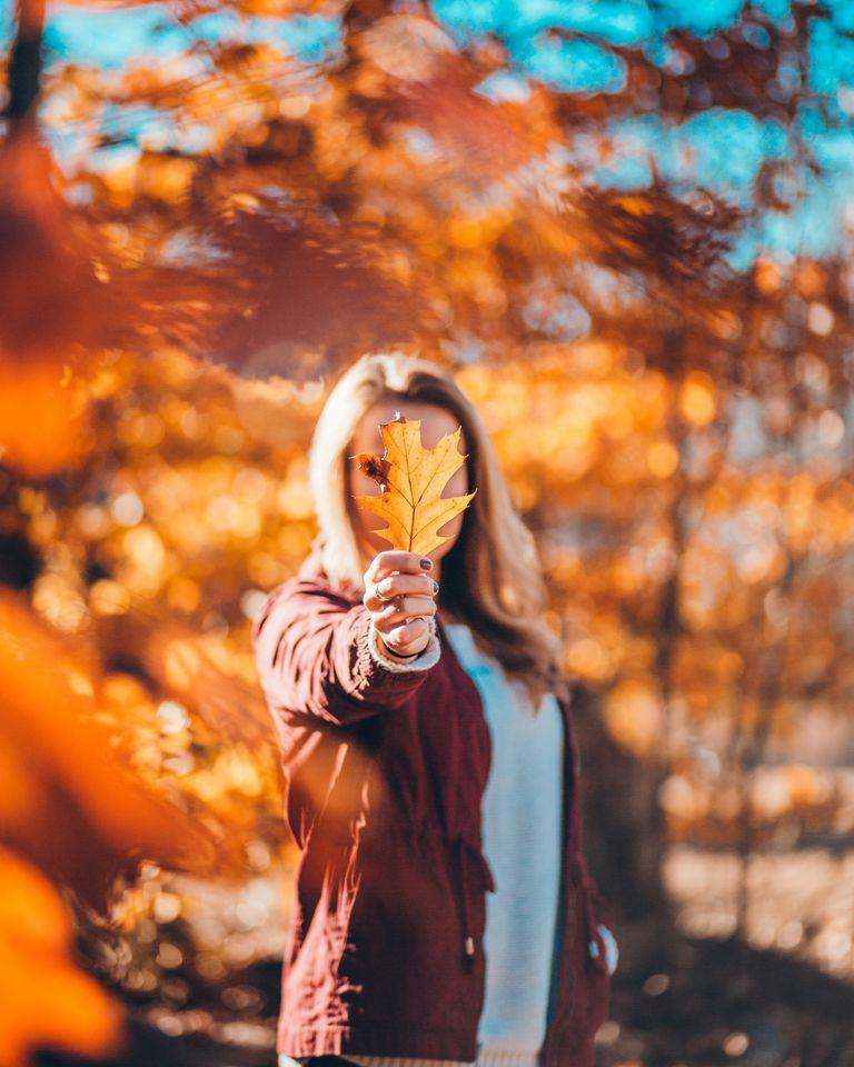 Bulletin énergétique d'automne