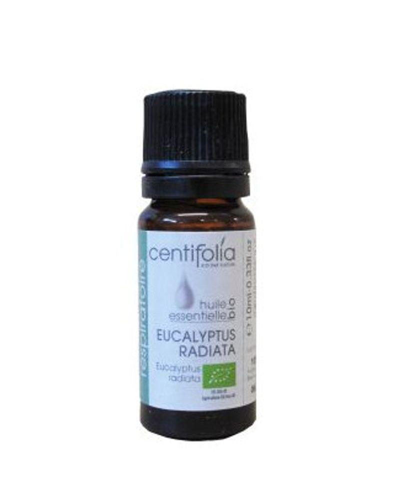 he eucalyptus radie centifolia