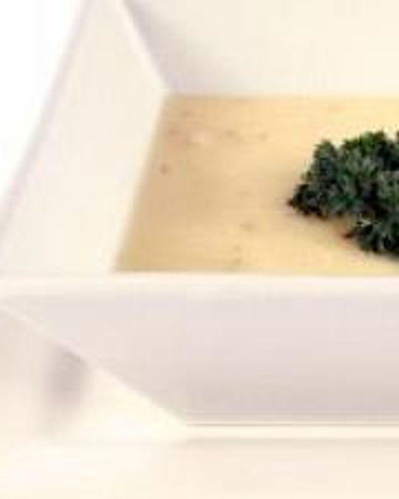 creme tofu persil