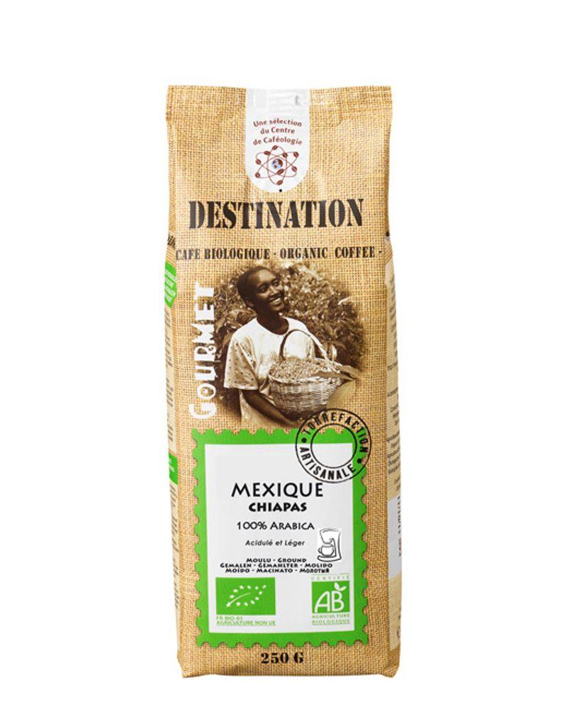cafe arabica bio destination