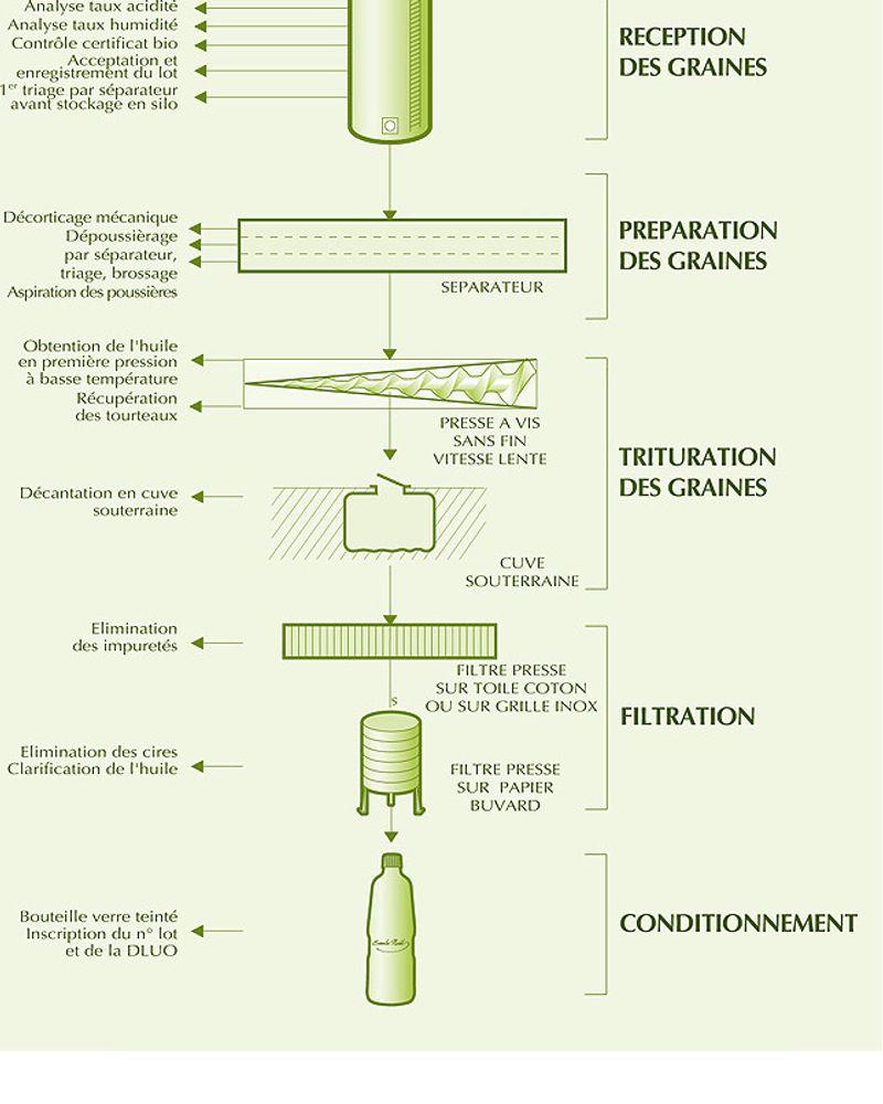 fabrication huile de noisette