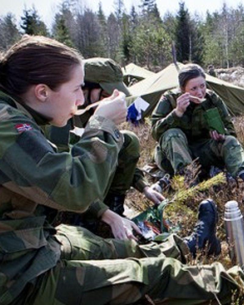 Armée Norvégienne