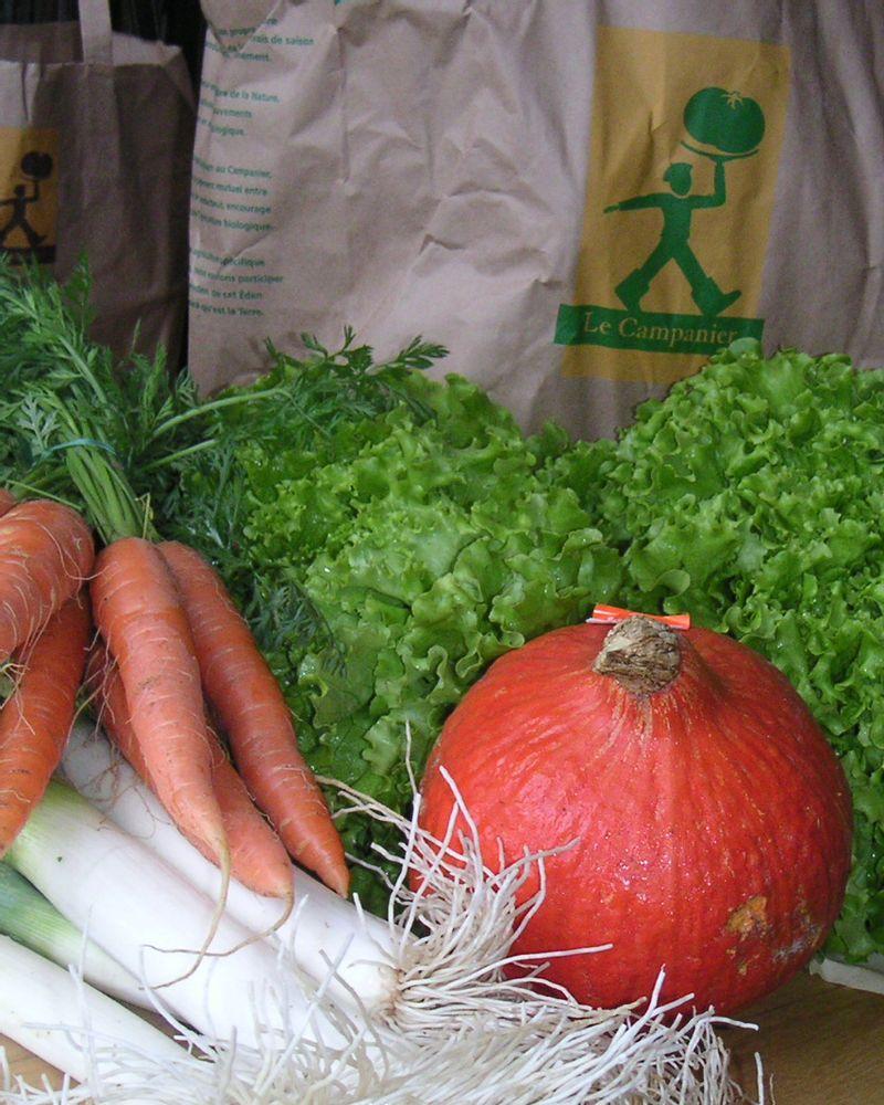 campanier légumes bio