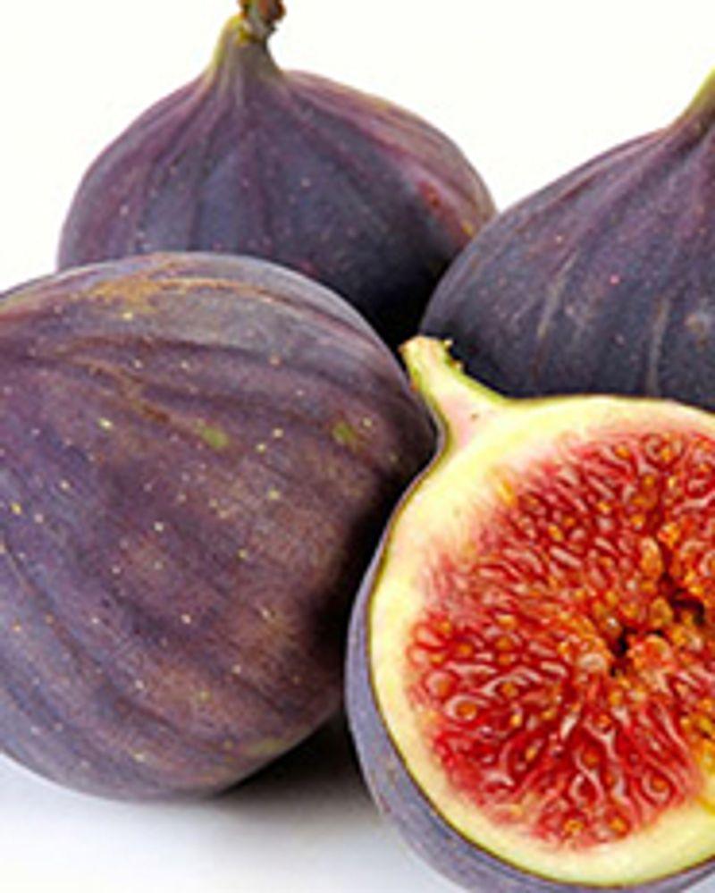 figue fruit