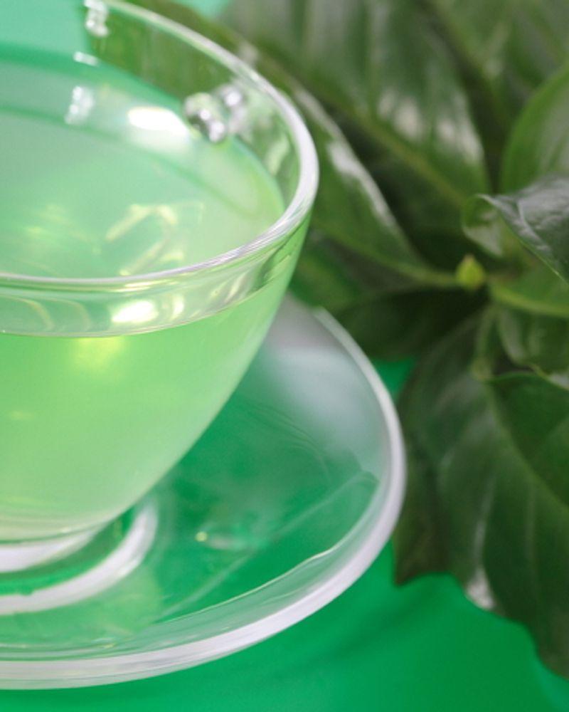 menthe tisane eau verre