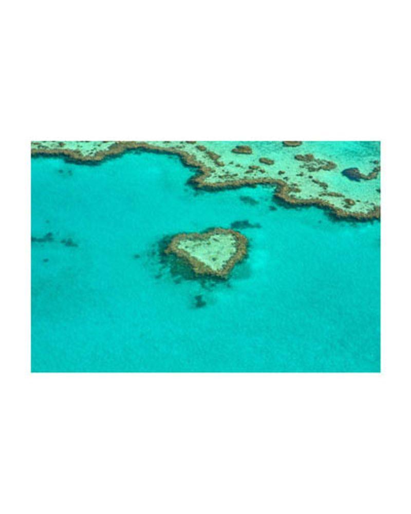 Entretien des coraux