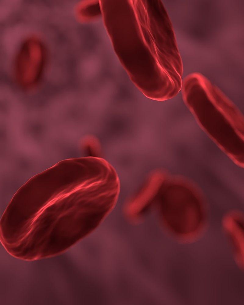 endométriose perturbateurs endocriniens