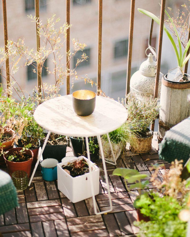 Potager urbain : 5 conseils pour cultiver sur son balcon