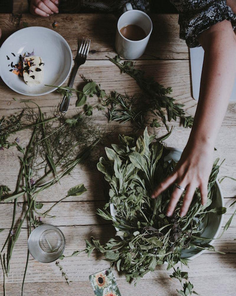 Assister à un stage d'herboristerie